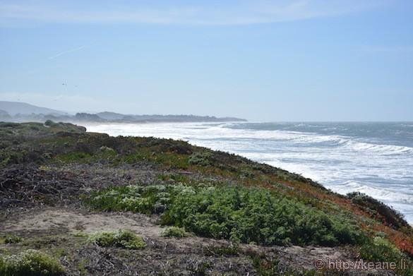 Dunes Beach in Half Moon Bay