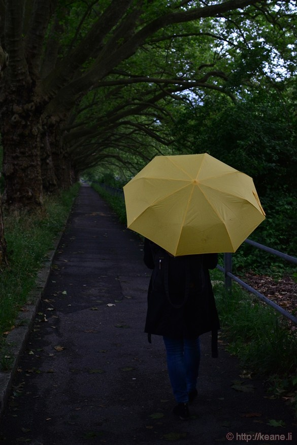 Girl with Yellow Umbrella in Zürich