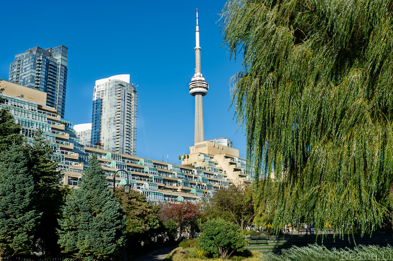 CN Tower from the Toronto Music Garden
