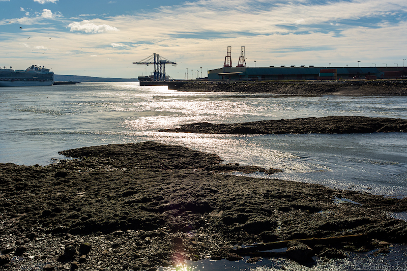 Bay of Fundy in Saint John